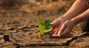 Rośnie rola banków w walce ze zmianami klimatu