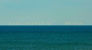 Chcą zasilać wszystkie domy w kraju energią z wiatraków