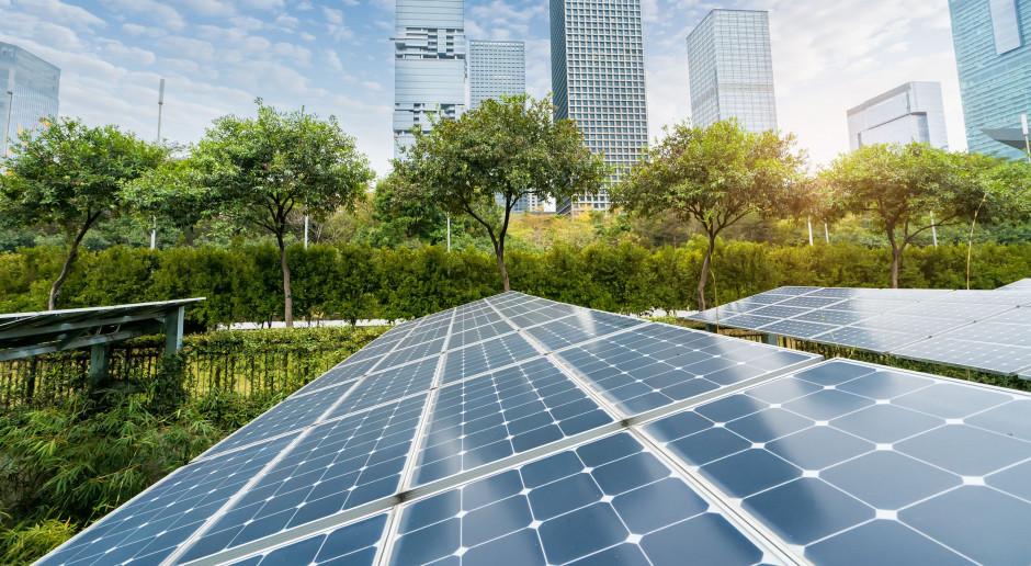 Nie wielkość a tempo wykorzystania środków kluczowe przy realizacji zielonych inwestycji