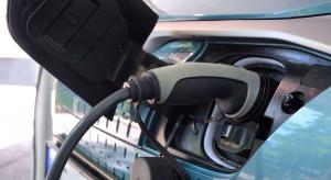 EV Klub Polska w gronie założycieli światowej organizacji klubów użytkowników aut na prąd