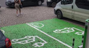 Druzgocąca opinia NIK o polskiej elektromobilności