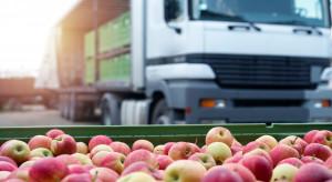 Eksport owoców może napędzić wzrost gospodarczy w Azji Centralnej