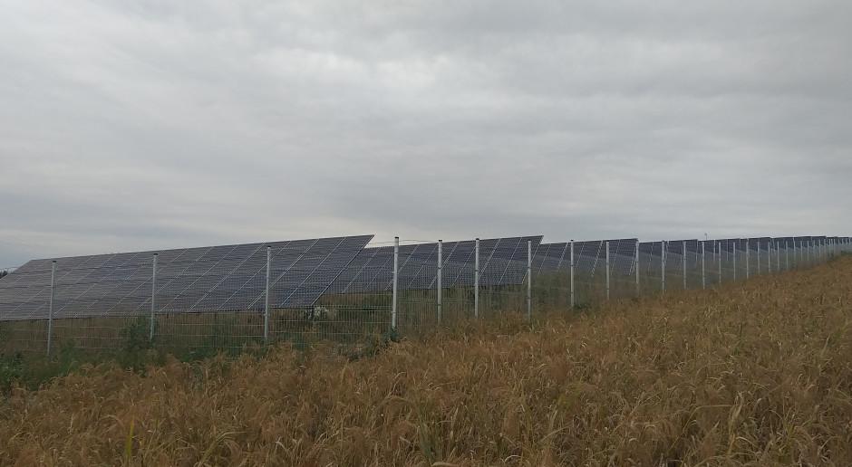 PGE ma już grunty pod farmy PV o mocy ponad 1250 MW