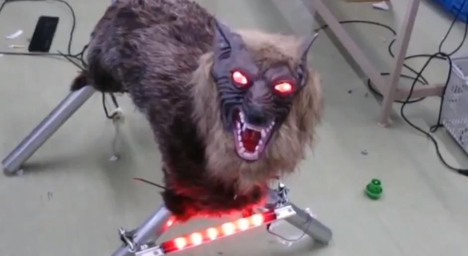 Wilki-roboty bronią Japończyków przed atakami niedźwiedzi