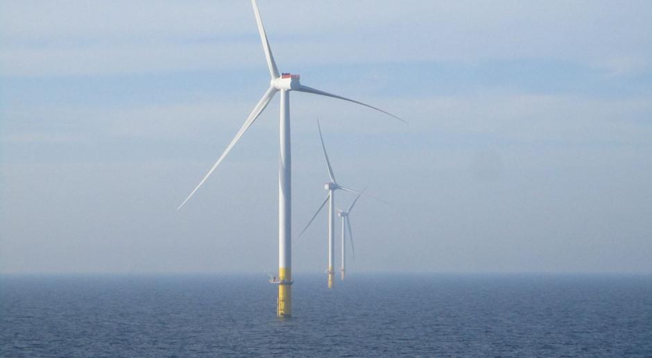 Rusza największa farma wiatrowa w Holandii
