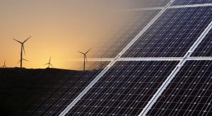 W 2021 roku zielona gospodarka zacznie się rozpędzać