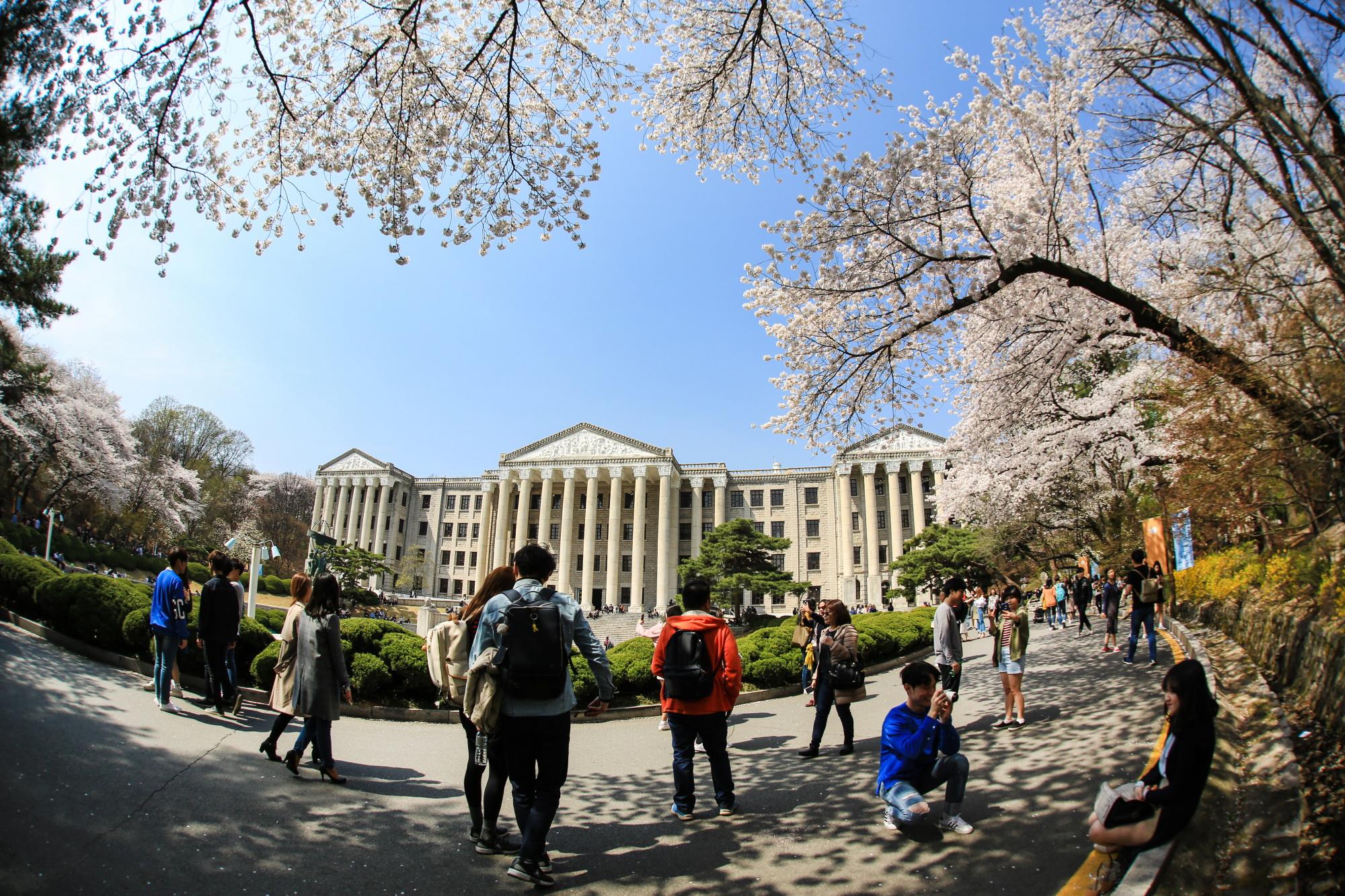 Koreańczycy przywiązują ogromną wagę do wykształcenia dzieci Fot. Shutterstock