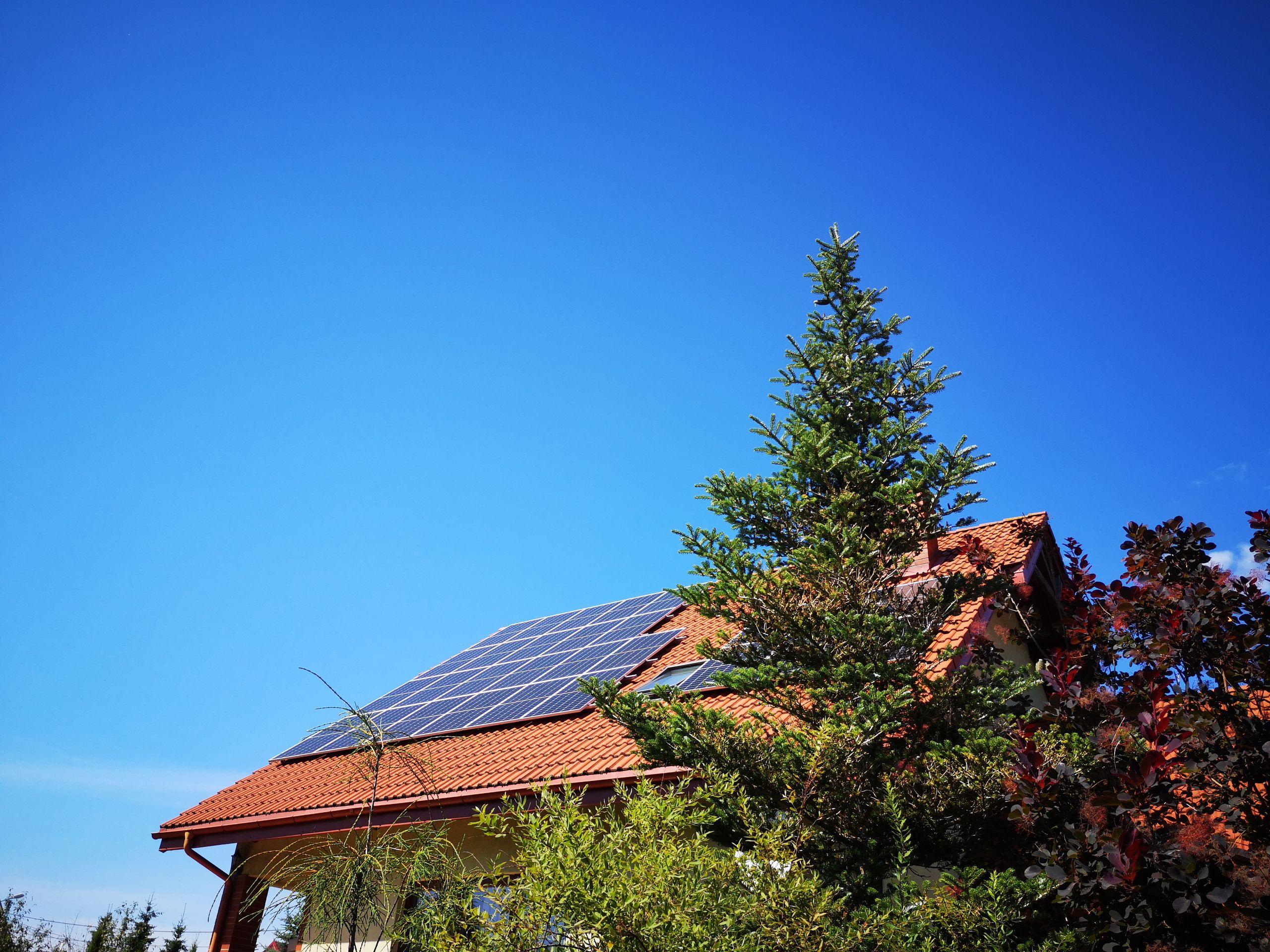 Dobrze rokującą grupą są firmy działające w sektorze zielonej energii (fot. Shutterstock)