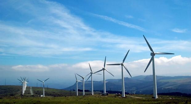 MRPiT: Gminy będą mogły łagodzić zapisy o lokalizacji wiatraków