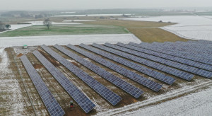 Deweloper z pierwszymi aukcyjnymi projektami PV o mocy ponad 1 MW