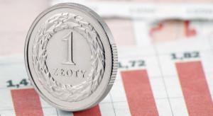 BIEC: Słabnący złoty i wzrost cen surowców nasilą inflację