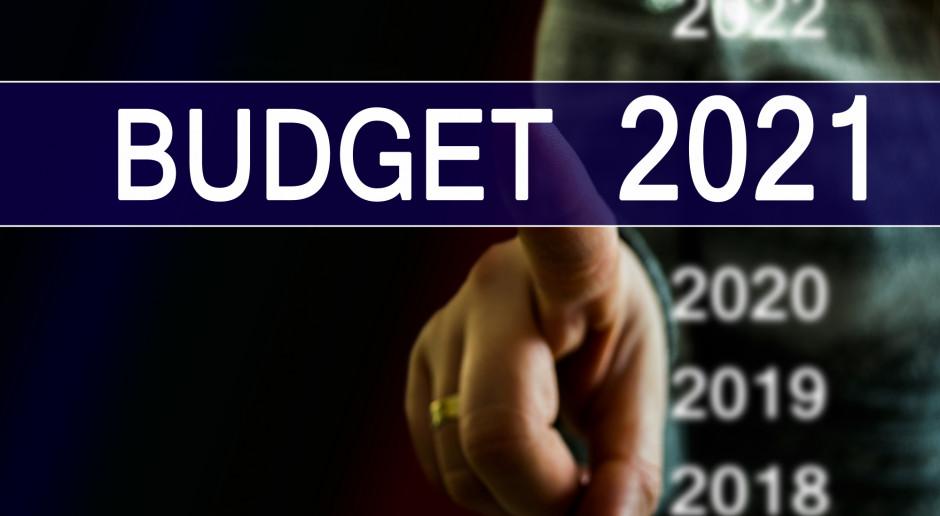 Ustawa budżetowa na 2021 r. ogłoszona w Dzienniku Ustaw