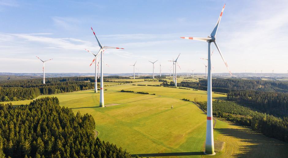 Powiało optymizmem od wytwórców energii z wiatru