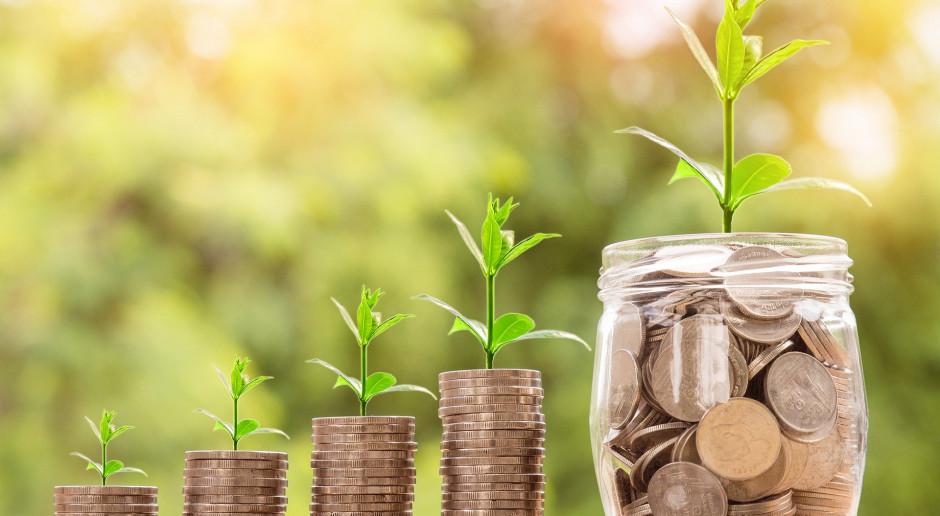 Projekty, które zdystansują konkurencję? Czas zielonych Inwestycji