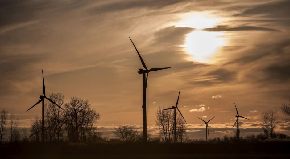 Oto jeden z powodów korzystania firm z zielonej energii