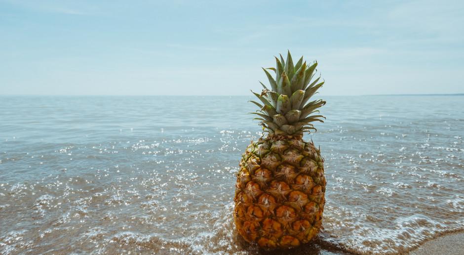 Chiński zakaz na tajwańskie ananasy zwiększa ich sprzedaż w Japonii