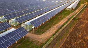 Polski rynek energetyki odnawialnej coraz bardziej atrakcyjny dla inwestorów