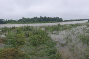 Wspólnie monitorują wpływ wód kopalnianych na środowisko