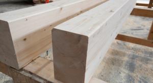 Drewno kluczowe w walce ze śladem węglowym budownictwa