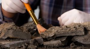 Polscy archeolodzy skorzystają z pomocy sztucznej inteligencji. Przełomowy projekt