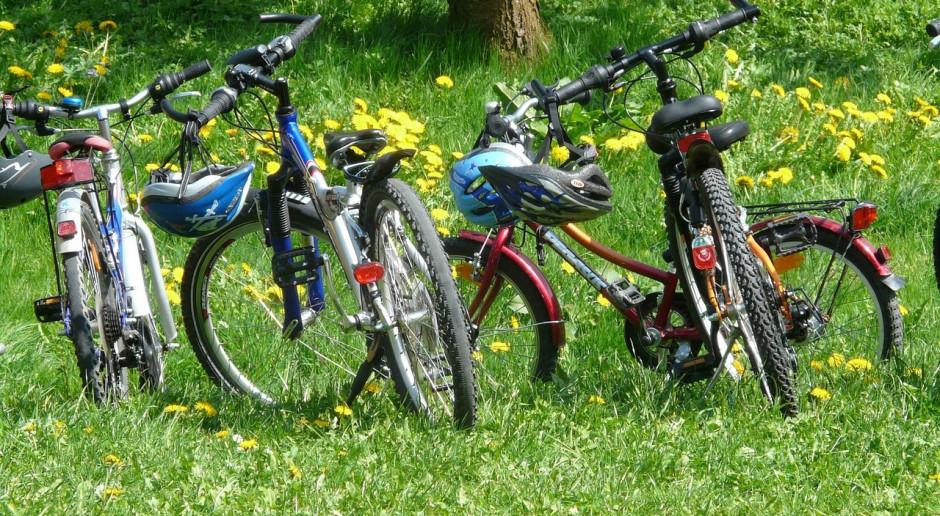 Firma Dadelo powiększyła rowerowy e-commerce w czasie pandemii