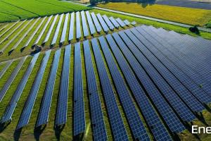 Fotowoltaika receptą na rosnące koszty energii dla firm