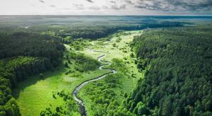Pięć kwestii, czyli jak poprawić stan środowiska naturalnego w Polsce
