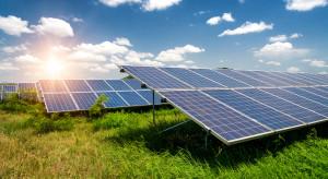 Stilo Energy ze sporym spadkiem sprzedaży w I kwartale 2021 roku