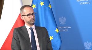 Wiceminister klimatu: Polityka energetyczna Polski to kompas dla gospodarki