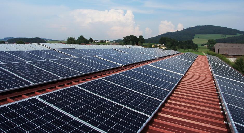 Avia Solar ma nową ofertę energii odawialnej dla firm