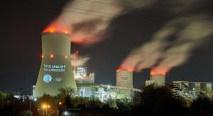Greenpeace: Liczymy, że decyzja TSUE podziała jak kubeł zimnej wody na ministra Sasina