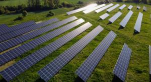 PGE Energia Odnawialna zbuduje 20 farm fotowoltaicznych