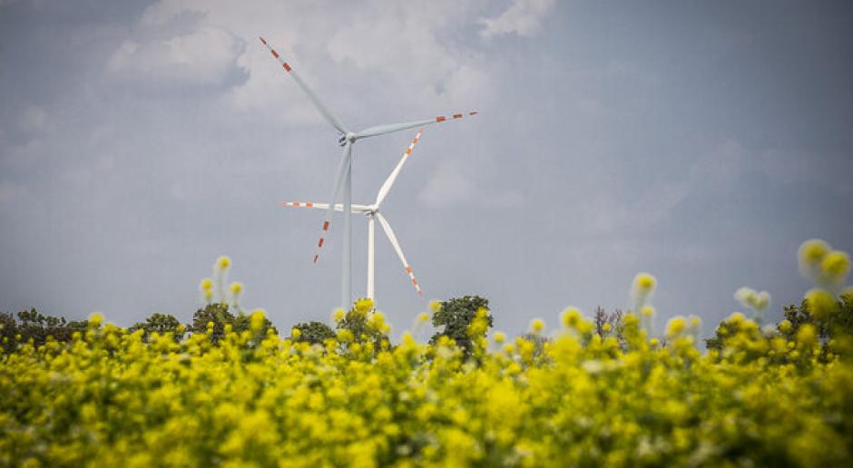 Tauron kupił projekt 11. farmy wiatrowej koncernu