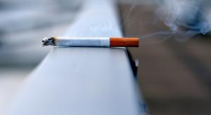 Holendrzy coraz częściej rzucają palenie