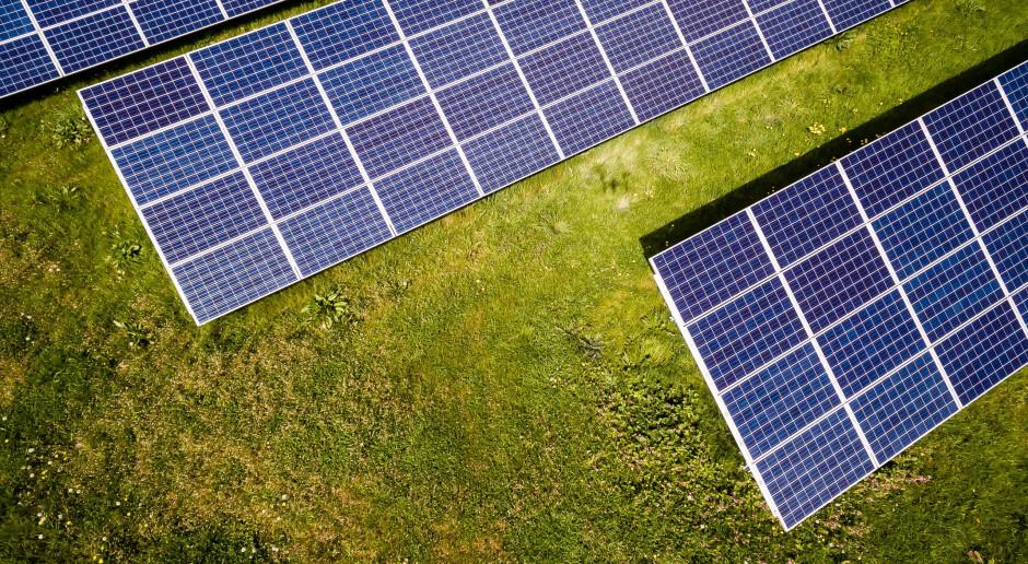 Holandia: Rząd zmierza stawiać panele słoneczne przy autostradach