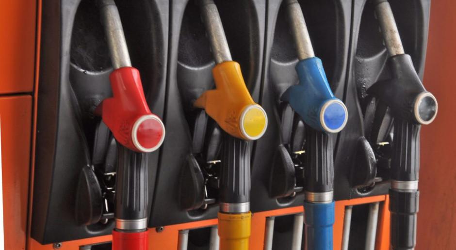 Polska powinna utrzymywać niską akcyzę na paliwa i prąd