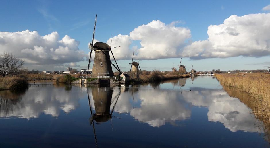 Holandia: Media: Wyłudzenia rządowej pomocy na wsparcie zatrudnienia w czasie pandemii