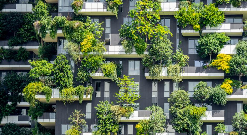 Nowy Bauhaus: kultura nowych nawyków. Lepsze życie po pandemii?