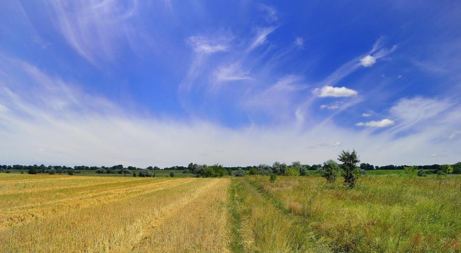 Ukraina sprzedaje ziemię. To szansa także dla nas