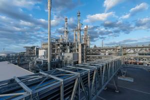 Zielona energia dla polskich zakładów BASF