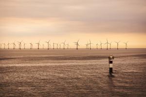 Zabraknie portu dla farm wiatrowych? Zamiast Polaków mogą zarobić sąsiedzi
