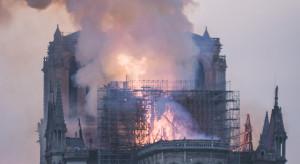Francja: Dęby przeznaczone na odbudowę katedry Notre Dame jadą do suszarni