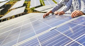 Chcą kupić 200 MW w farmach fotowoltaicznych i biogazowniach