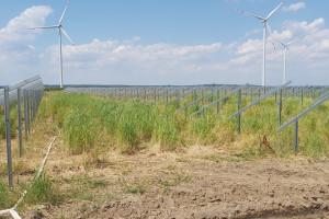 Energa zbuduje farmę fotowoltaiczną na 24 hektarach