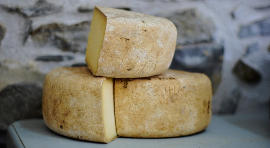 KOWR: Sery dominują w eksporcie produktów mleczarskich