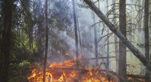 Gigantyczne pożary na Sardynii