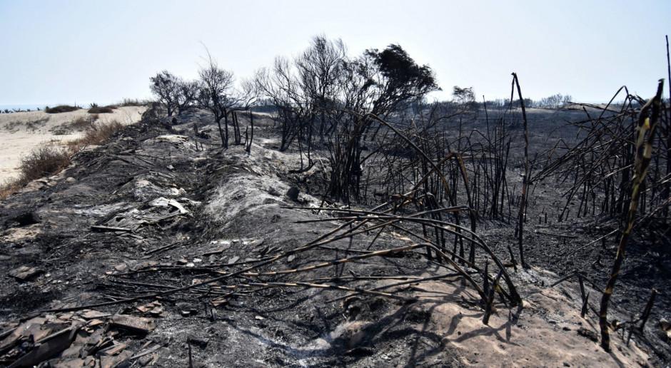 Włochy: Pożary w rejonie Katanii i Palermo na Sycylii