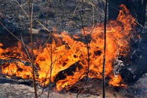 Pożar na Peloponezie