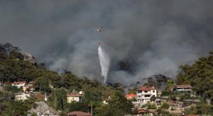 Turcja: Na południu kraju szaleje ponad 100 pożarów