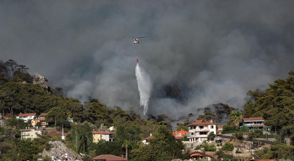 Turcja: Rząd: Na południu kraju szaleje już ponad 100 pożarów. CNN: Płoną zwierzęta